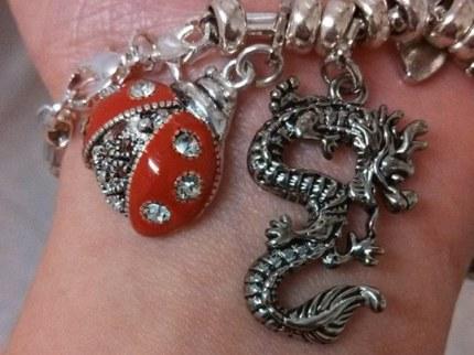 Ladybug & dragon