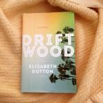 Driftwood: A California Road Trip Novel
