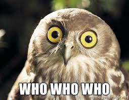 owl who